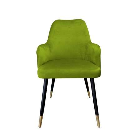 Olive upholstered PEGAZ chair material BL-75 with golden leg
